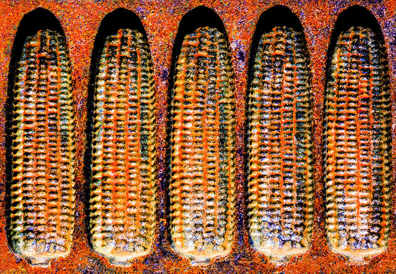 Rust-on-the-Cob-L.jpg